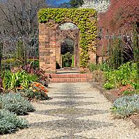 Cloudehill Gardens - Victoria - Australia