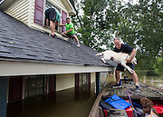 After getting help out of his second-story window, Anthony Burkett, center, helps his dog, Reese, with getting into a boat during the flooding in Baton Rouge on Sunday, August 14, 2016. (Photo by Chris Granger, Nola.com | The Times-Picayune)