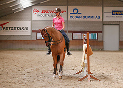 Peters Stephanie (NED) - Unlimited<br /> Dressage Stables Stephanie Peters - Roermond 2013<br /> © Dirk Caremans
