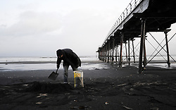 © Licensed to London News Pictures. 13/12/2011..Saltburn, England..A man (name not given) collects sea coal from Saltburn beach in Cleveland. The coal is washed up during heavy seas and settles on the sand as the tide goes out leaving high quality coal dust that is often collected and once dried is wrapped tightly in newspaper making coal cones which are then burned...Photo credit : Ian Forsyth/LNP