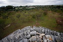 27\10\2010 Veduta dall'alto della zona Canale di Pirro, volgendo lo sguardo verso Castellana Grotte ( prov.di Ba), paese che si vede in lontananza, dal di sopra di una specchia di 9 metri. La specchia è un accumolo di pietre informi accatastate le une sulle altre in forma circolare da ricordare una torre, codesto materiale proviene dalla spietramento del terreno roccioso ( tipico di queste zone) eseguito dai contadini per le coltivazioni. Il suo nome dialettale deriva dal termine latino specula che indica un punto di avvistamento, infatti queste costruzioni venivano utilizzate dalle antichisse popolazione per il controllo del paese oltre che in seguito utili per avvistare il nemico dai soldati tedeschi o americani durante la seconda guerra mondiale...In Puglia, ancora oggi, persistono realtà autentiche e genuine: flora e fauna sono gli ingredienti base delle masserie che con i loro muretti a secco costellano il territorio del tacco d' Italia. Qui l'allevamento è una delle attività principali, ieri come oggi, che il massaro porta avanti quotidianamente con pazienza e devozione. La masseria delle Murge è abitata da equini, bovini, ovini ecc. che sono il motore della produzione alimentare come per esempio la tipica mozzarella. Entriamo quindi in un'atmosfera bucolica che ci fa respirare odori, gustare sapori e ammirare colori che identificano il territorio. Buon viaggio dei sensi..