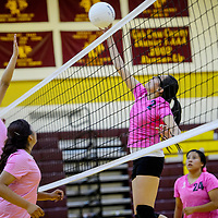 Tohatchi Cougar Shundeen Martin (2) tips the ball past the Newcomb Skyhawks Tuesday at Tohatchi High School.