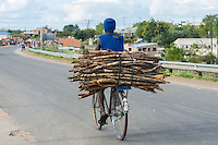 A Mozambican rides his bicycle loaded with firewood, Caia, Zambezi River Floodplain, Sofala Province, Mozambique