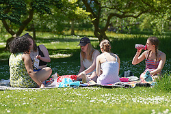 © Licensed to London News Pictures. 09/06/2021.Sheffield, UK. Members of the public enjoy the sunshine in Bottanical Gardens in Sheffield this afternoon.Photo credit: Ioannis Alexopoulos/LNP