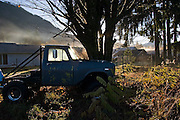 The sun strikes a pickup truck parked against a tree on a chilly winter morning in Darrington, Washington.