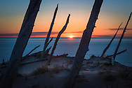 The sun sets on the Ghost Forest - Sleeping Bear Dunes National Lakeshore