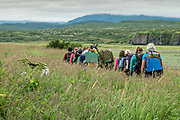 Managing Park Ranger Tom Griffin, center, leads campers into the remote McNeil River Game Sanctuary to view grizzly bears in the Katmai Peninsula, Alaska. The remote park has the largest concentration of brown bears in the world.