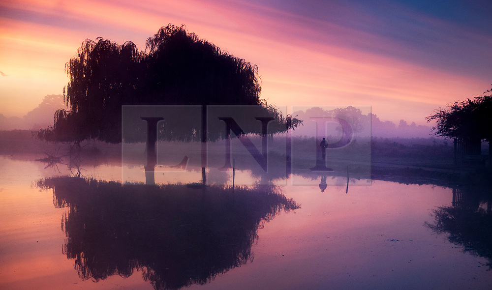 © Licensed to London News Pictures. 03/10/2019. London, UK. The sun rises over a chilly and misty Bushy Park in south west London. A cold clear day is expected in parts of the UK today. Photo credit: Peter Macdiarmid/LNP