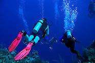 Scuba Diving the Caribbean