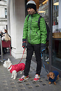Multicoloured jackets worn by a dog owner and his two dogs in London, England, United Kingdom. The mnan with his two pets on their leads is wearing green, whilst his Scottie Dog wears red and his Dachsund is in blue.
