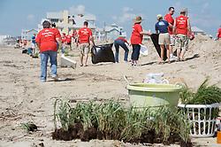 Volunteers planting dune grasses on West Beach, Galveston Island, Texas.