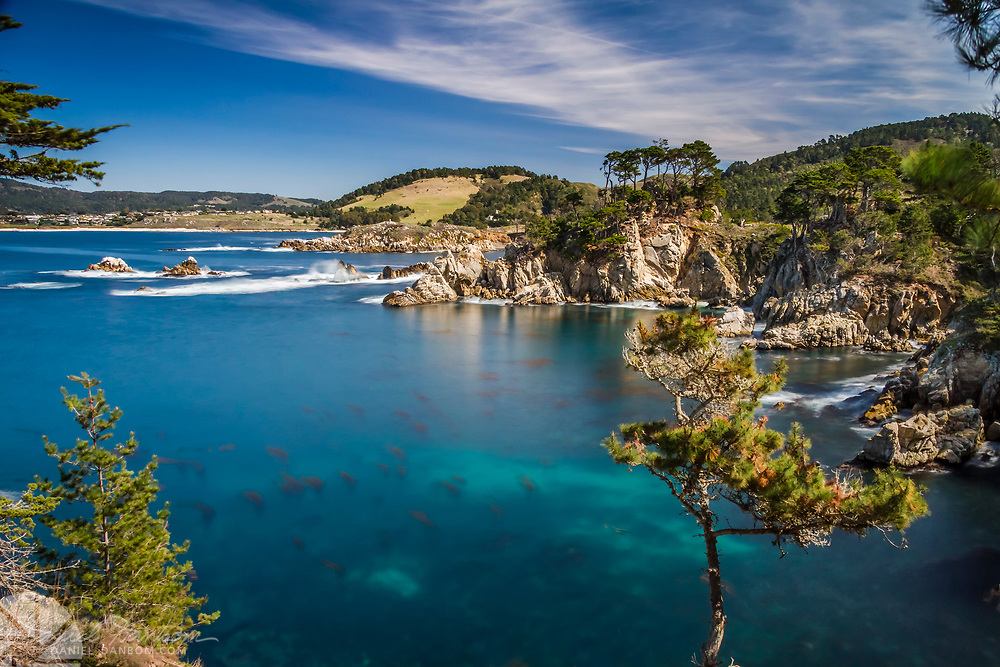 Point Lobos State Reserve looking east from near Whaler's Cove, near Carmel, California, Highway 1,