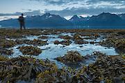 Man walking along the shore of Resurrection Bay, Seward, Alaska