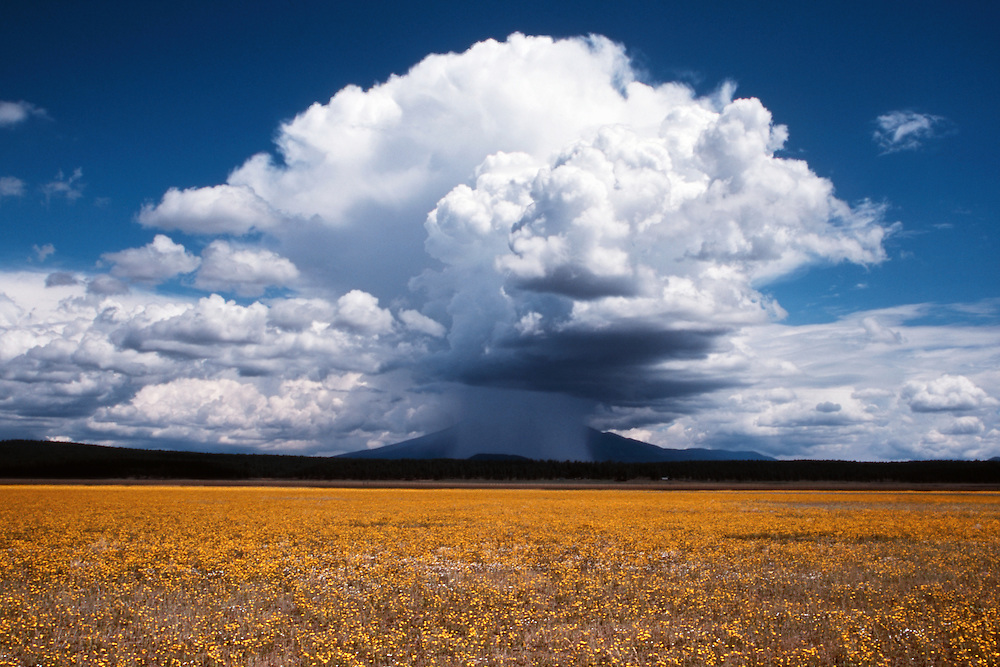Isolated electrical storm over the San Francisco Peaks