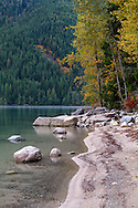 Fall foliage colour along the shoreline of Chilliwack Lake in Chilliwack Lake Provincial Park, Chilliwack, British Columbia, Canada