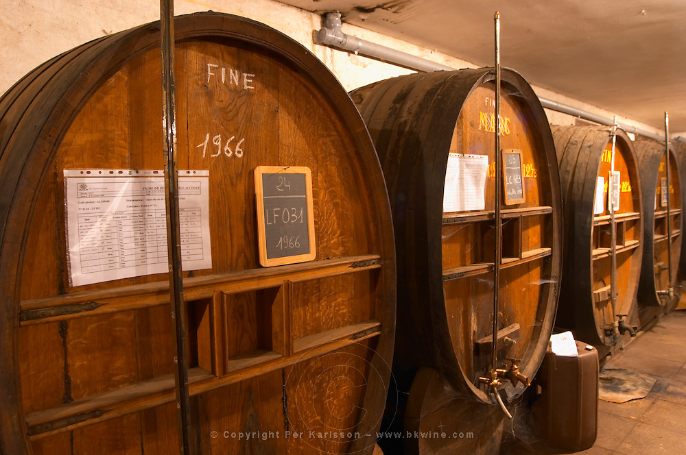 In the Chapoutier winery. The special storage room for spirits, marc, fine, with old wooden barrels and vats. Chapoutier is one of the few who still have the right to distil alcohol. Fine 1966. Domaine M Chapoutier, Tain l'Hermitage, Drome Drôme, France Europe