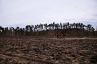 Sadowne, woj. mazowieckie, 13.03.2021. N/z wiata turystyczna na calkowitym zrebie w lesie fot Michal Kosc / AGENCJA WSCHOD