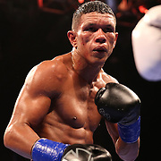 WINTER PARK, FL - AUGUST 02: Juan Carlos Payano is seen as he fights against Rau'shee Warren during the Premier Boxing Champions on Bounce TV boxing match at Full Sail University - Ebbs Auditorium on August 2, 2015 in Winter Park, Florida. Payano won the bout and retained his WBA and IBO  bantamweight title. (Photo by Alex Menendez/Getty Images) *** Local Caption *** Juan Carlos Payano; Rau'shee Warren