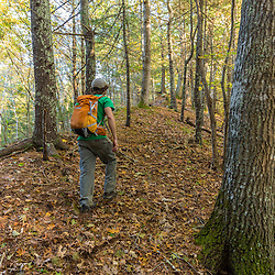 A young man walking in the woods in Marshfield, Massachusetts. Hoyt-Hall Preserve.