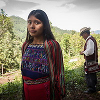 Indigenous community member Petrona. CWS supports local organisation CIEDEG to run a food production and nutrition programme in several areas of Guatemala. With their support, in the indigenous highlands of Nebaj, villagers have increased their food production by using greenhouses and irrigation. FRB supports CWS to run a food security programme in the region.