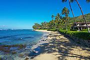 Diamond Head Beach; Kahala; Honolulu; Oahu; Hawaii; USA
