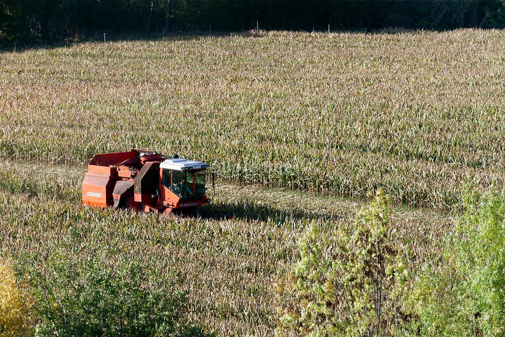 corn cub harvesting machine at work in the cornfield France