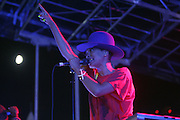 August 25, 2012-Brooklyn, NY: Recording Artist Erykah Badu performs  at the Afropunk Festival 2012 held in Brooklyn, NY on August 25, 2012. The Afropunk Festival has become a Brooklyn intuition, the focal point for the burgeoning Afro-punk movement. Over the past seven years, the festival has presented new artists before they hit it big, such as Grammy-nominated Santigold, The Noisettes and Janelle Monae. Afro-punk mainstays like Saul Williams, The Dirtbombs, and Dallas Austin have also graced Afro-punk's stages. (Terrence Jennings/TerrenceJennings.com)