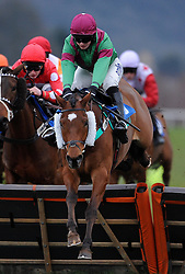 Haverstock ridden by T J O'Briend during the Evergreen Landscaping And Tree Surgery Handicap Hurdle (Class 5) (4YO plus)  - Photo mandatory by-line: Harry Trump/JMP - Mobile: 07966 386802 - 09/03/15 - SPORT - Equestrian - Horse Racing - Taunton Racing - Taunton Racecourse, Somerset, England.