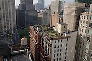 Rooftop gardens overlooking Broadway, Manhattan, New York City.