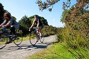 Bissoe cycle trail