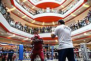 BOXEN: IBO-Weltmeisterschaft, Pressetraining, Hamburg, 03.07.2019<br /> EC Boxing: Nikola Milacic<br /> © Torsten Helmke