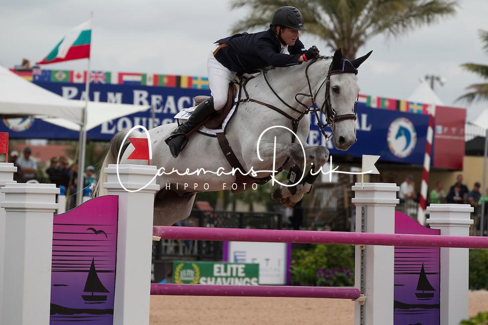 Sweetnam Shane (IRL) - Traffic Boy<br /> Horseware GP CSI 2*<br /> Wellington 2012<br /> © Hippo Foto - Cealy Tetly