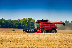 A large farm implement known as a combine harvests or picks soybeans from a field in central Illinois