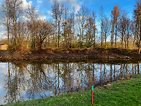 HALFWEG - , Amsterdamse Golf Club. Houtwal tussen hole 15 en 16.    COPYRIGHT KOEN SUYK