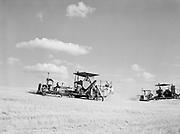9969-7077. Two combines harvesting wheat on a ranch near Dufur, Oregon. H. A. Miller, 4000 acres, 25 to 50 bushel per acre. August 9, 1947.