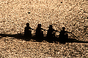 Silhouette of women's fours rowing team