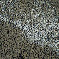 Mud dries on the high prairie of Phillips County, Montana.
