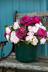Bucket of cut roses