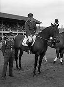 "0808/08/1987<br /> 08/08/1987<br /> 08 August 1987<br /> RDS Horse Show, Ballsbridge, Dublin. Comandant gerry Mullins on ""Limerick"" with groom."