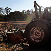 """Lester Anderson, of Bluffton, watches over his shoulder as he prepares the soil by pulling a disc harrow behind a tractor on a plot of land off of Buck Island Rd in Bluffton on February12, 2015.  """"Getting ready for the summer crop... I'll start seeding the day after Good Friday,"""" said Anderson."""
