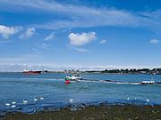 Harbour and industrial area near Rotterdam / Haven en industrie gebied met boten en zwanen bij Roozenburg, Rotterdam.