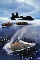 The Wild coast SPAIN/ANAGA, TENERIFE, CANARY ISLANDS The Anaga peninsula is a remote and wild corner of Tenerife, with a brutally rocky coastline and misty laurel forests, accessible only through ancient hiking trails, that have been renovated in recent years. Most of these start or end at the coast. Many species in the Canary Islands, especially among the plants, are so-called endemics – meaning they live only there and nowhere else on Earth. More than 30% of the land area of the Canary Islands are Natura 2000 reserves.