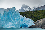 The northeast edge of the tongue of Perito Moreno Glacier, on Lake Argentino in Los Glaciares National Park, in Santa Cruz Province, Argentina, Patagonia, South America. Photographed from the Glaciers Gourmet Full Day Sightseeing Cruise on board the 'Maria Turquesa'.  Navigating the Canal de los Tempanos reached impressive Perito Moreno Glacier where we briefly disembarked certain package-tour members. Remaining passengers cruised back to La Soledad port. Lago Argentino is the biggest freshwater lake in Argentina and reaches as deep as 500 meters (1640 feet). Its outlet, the Santa Cruz River, flows into the Atlantic Ocean. Despite most glaciers worldwide retreating due to global warming, the position of Perito Moreno Glacier's grounded tongue has been a relatively-stable exception for the past 50 years. In contrast, the larger Upsala and Viedma glaciers located north of Perito Moreno have retreated dramatically. Scientists say that nearly 90 percent of the glaciers in Antarctica and Patagonia are melting quickly (2009 data). Located 78 kilometers (48 mi) from El Calafate, Perito Moreno Glacier was named after explorer Francisco Moreno, a pioneer who studied the region in the 1800s and defended the territory of Argentina during the international border dispute with Chile. Los Glaciares National Park is honored on UNESCO's World Heritage List.