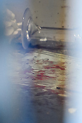 © Licensed to London News Pictures. 03/01/2019. London, UK. Blood covered floor, a champagne glass and flowers, inside the entrance doorway to 80 Park Lane in Mayfair, where security guard Tudor Simionov was stabbed to death in the early hours of New Year's day. The 33-year-old and his colleagues were attacked by a group of men who were trying to gain entry to a party at Fountain House, a £12.5 million townhouse in London's West End.. Photo credit: Ben Cawthra/LNP