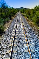 Train tracks of the Chihuahua al Pacifico Railroad (Chepe) train, near the Copper Canyon, Mexico