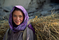 Asia, India, Ladakh, Nimo Village. Girl carries bundle of barley on back.