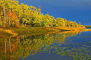 Autumn colors on Middle Lake <br />