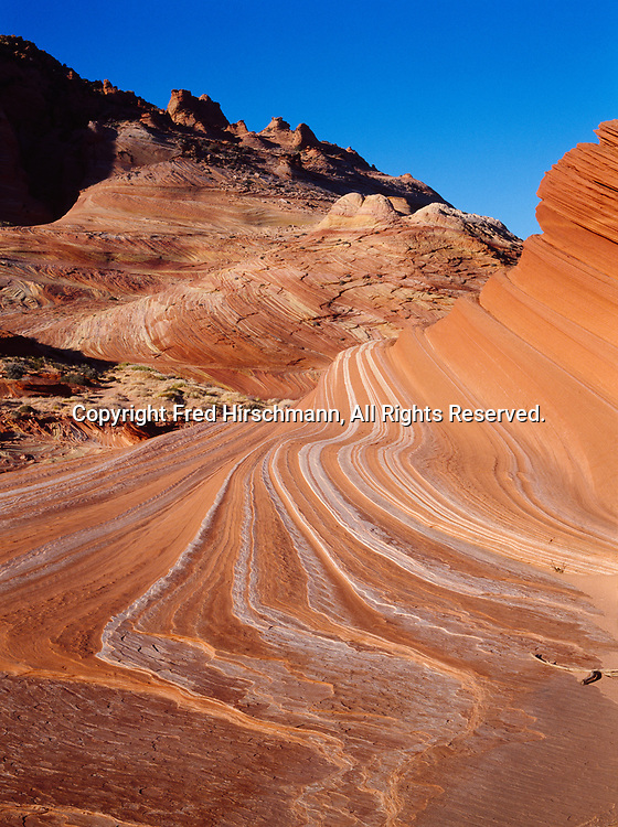 Colorful bedding pattern of wind-sculpted Navajo Sandstone, Vermilion Cliffs National Monument, Paria-Vermilion Cliffs Wilderness, Arizona.