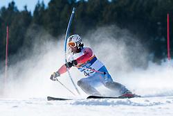 BEREJNY Nicolas, FRA, Slalom, 2013 IPC Alpine Skiing World Championships, La Molina, Spain