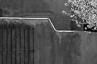 Adobe wall, iron gate and flowering tree, Santa Fe New Mexico B&W photograph